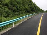 伟德betvictor中文版伟德betvictor 苹果网,贵州伟德betvictor 苹果网,百里杜鹃旅游公路安保工程